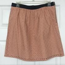 Ann Taylor Loft Blush Pink Eyelet Cotton Skirt Petite Size 8p Photo