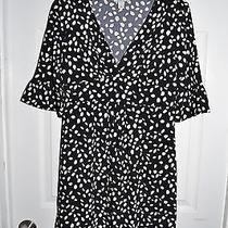 Ann Taylor Loft Euc Black/white Dress Size 4p Photo