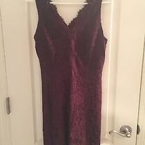Ann Taylor Loft Lace Dress Photo