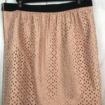Ann Taylor Loft Pink Blush Cotton Mini Embroidered Skirt Size 8 Photo