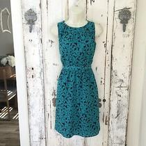 Ann Taylor Loft Size 4p 4 Petite Woman's Blue Black Sleeveless Floral Dress Photo