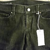 Ann Taylor Modern Fit Blue Jeans -- Size 6 Nwt Photo
