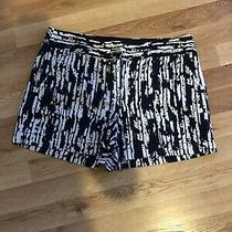 Ann Taylor Navy White Shorts Size 6 Photo