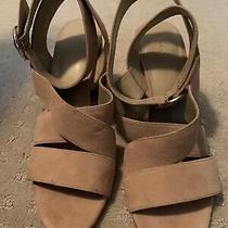 Ann Tayor Sandals Nude Beige Women Sz 8 Ankle Strap Suede Nwot No Box/never Worn Photo