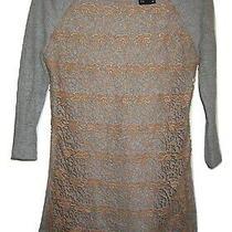 Anthropologie Dolan T-Shirt Gray Crochet Lace Sweater Sweatshirt Top Size Xs Photo