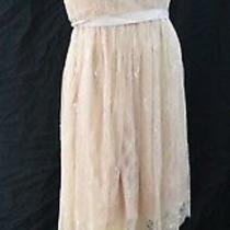 Anthropologie Hitherto Shabby Dress Short Gown Formal Sexy Blush Lace Sz 10 New Photo