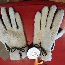 Anthropologie Nwt Free Shipping  Tauplitz Shearling Gloves  Photo