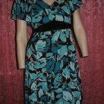 Apt 9 Dress Pm Brown Aqua Blue  Photo