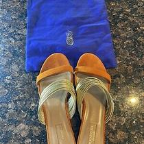 Aquazurra Sandals Size 8.5 Orange and Gold Slip Ons Flats With Bag. Photo