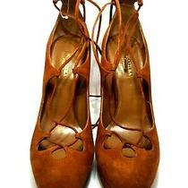 Aquazzura Brown Suede Luggage Dancer Plateau Lace Up Stiletto Pumps Size 38.5 Photo