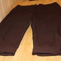 Arden B Knee Length Shorts (Size 1)  Photo