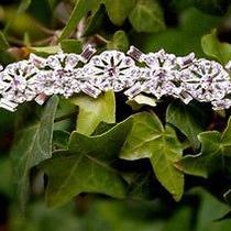 Art Deco Swarovski Crystal Comb Photo