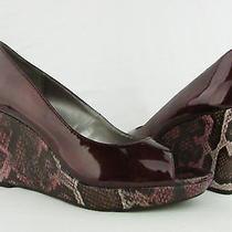 Auburn by Bandolino for Women Size 10m New With Box Wine Reptile Print Photo