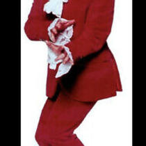 Austin Powers Deluxe Costume Red Blazer Pant  Wig Dickie Glasses Necklace L Photo