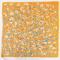 Auth Hermes Scarf Carre