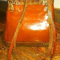 Authenic Dooney and Bourke Brown Leather Handbag With Croc Photo
