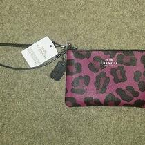 Authentic Beautiful Coach Wristlet New With Tags Photo