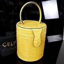 Authentic Celine Crocodile Alligator Textured Pattern Cosmetic Vanity Bag G611 Photo