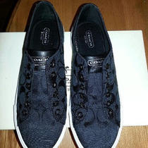  Authentic Coach  Barrett Signature Print  Fashion Sneakers Blk Slip on 8.5 Nib Photo