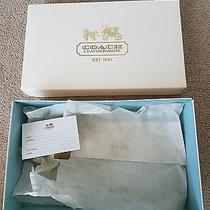 Authentic Coach Box Only - White - 10