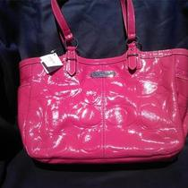 Authentic Coach F19462 Sv/rose Mothers Day Spring Summer Photo