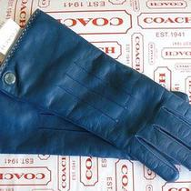 Authentic Coach Moroccan Blue Leather & Cahsmere Gloves New With Tags Photo