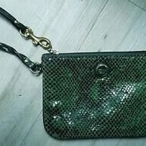 Authentic Coach Snakeskin Texture Leather Wallet Wristlet Clutch Green Purse Photo