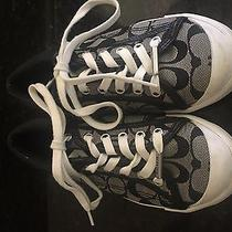 Authentic Coach Sneakers Photo