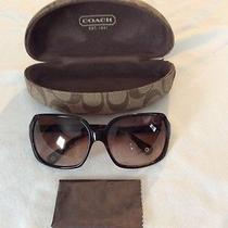 Authentic Coach Sofia S465 Tortoise Sunglasses / Case / New Coach Cloth Photo