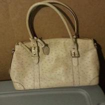 Authentic Dooney &  Bourke Handbag Creame Color Hobo Bag Purse Nice Brand Name Photo