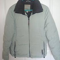 Authentic Element Protector Snow Ski Jacket Outerwear Weather-Tech Women's Sz M Photo