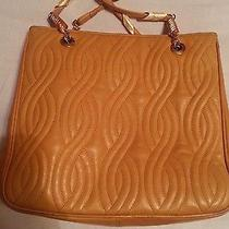 Authentic Fendi Sas Handbag Photo