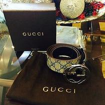 Authentic Gucci Belt New With Tag  Photo