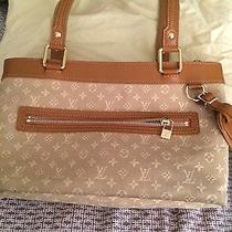 Authentic Louis Vuitton Bag Photo