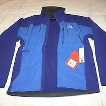 Authentic North Face Apex Bionic Jacket Jake Blue/bolt Blue Climateblock Medium Photo