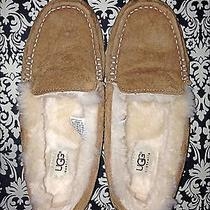 Authentic Ugg Women Slippers Photo