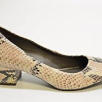 Authentic -Used- Tory Burch Women's Beige Snake Print Pumps Size 6m 350 K1190d Photo