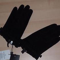 Authentics Bcbg Max Azria Black Leather Suede Womens Gloves Size M/l Photo