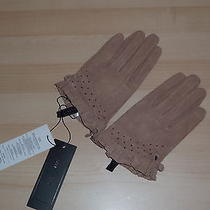 Authentics Bcbg Max Azria Warm Taupe Leather Suede Womens Gloves Size Xs/s Photo