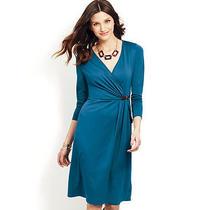 Avon Belted Wrap Dress Photo