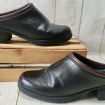 Avon Black/brown Leather Clogs Women Size 6 M Photo