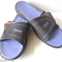 Avon Curves Women's 11 Lavender Gray Sandal Flip Flop Shoe Athletic Photo
