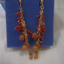 Avon Multi Color Dangler Earring Photo