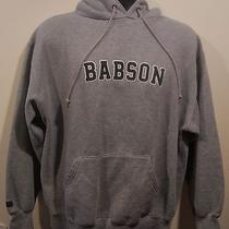 Babson Jansport Hoodie Sweatshirt Adult Size Medium College Massachusetts Photo