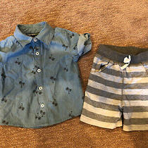 Baby Boys Designer Clothes - Bloomies Boys - Shirt & Shorts - 12 Months Photo