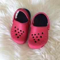 Baby Crocs  Photo