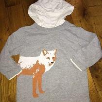 Baby Gap 2t Boys Yellow Hoodie Top Shirt Long Sleeve Euc Fox Photo