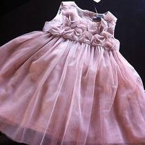 Baby Gap 3d Rosette Dress Nwt 50 6-12 Mos Photo