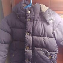 Baby Gap 3t Boy Jacket Photo