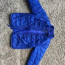 Baby Gap Blue Boy Coat Photo